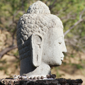 Art Buddha Head_square
